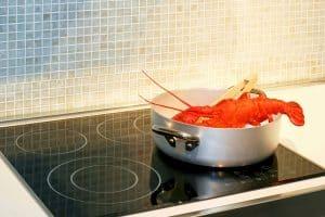 Hummer zubereiten mit autarken Kochfeld